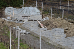 Thaler-Trockensteinmauer-4_
