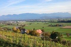Weinlage Altstätten